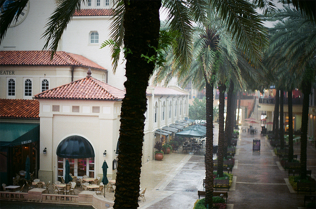 Deluge in West Palm Beach