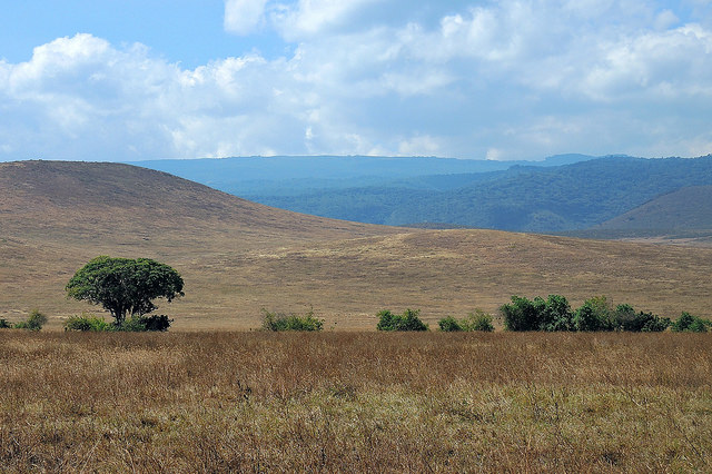 Tanzania (Ngorongoro) Another view from conservation area